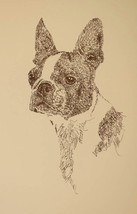BOSTON TERRIER SIGNED ART LITHOGRAPH #49 Stephe... - $49.45