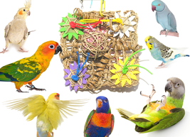 Chew & Forage Activity Vine Mat Bird Toy - Made in the USA - £17.10 GBP