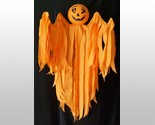 Pumpkin reg. body thumb155 crop