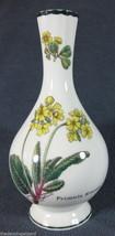 Royal Albert Works Astbury Staffordshire Florabunda Fine Bone China Bud ... - $37.36