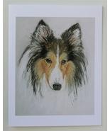 Sheltie Shetland Sheepdog Note Cards Dog Art Solomon - $12.50