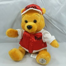 2003 Disney Store Theme Park Edition Winnie the Pooh Bean Bag Plush with... - $14.95