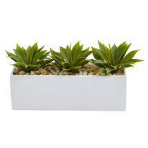 Agave Succulent in Rectangular Planter - $59.56