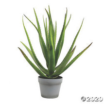 "Vickerman 23"" Artificial Green Aloe with 18 Leaves in Round Gray Pot - $115.35"
