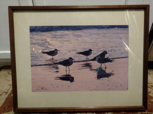 "Primary image for ""Twilight on the Beach"" by Lynn Stone SIGNED Photograph"