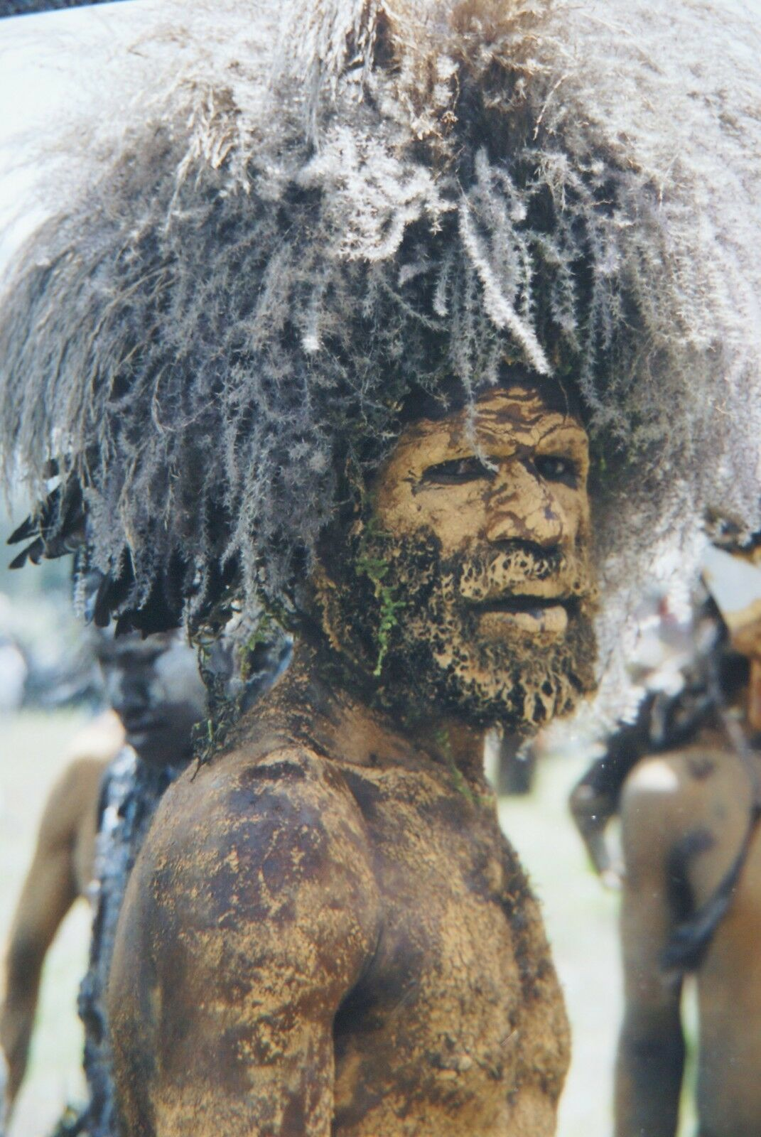 "Rare Tribal Clan Spirit Cult Ancestor Mask Nassa Sepik New Guinea Art 44"" 14A1 -"