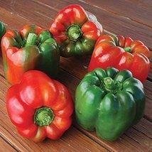 25 Seeds of Ozark Giant Pepper / Capsicum annuum - $13.85