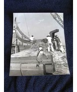 Interesting Black White Penguin Photo Penguin in Construction Site Ted Lau - $39.99