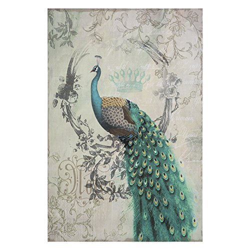 Yosemite Home Decor Peacock Poise II Multi