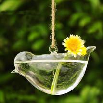 SOLEDI Clear Bird Glass Vase Bottle Terrarium Hydroponic - $11.95