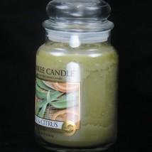 Yankee Candle Sauge & Agrume With Pur Naturelle Usine Extrait 651ml Neuf - $27.58