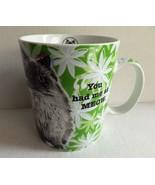 KONITZ Germany Green Mug Cat Lovers Only Hello Himalayan Persian MINT - $9.89
