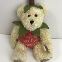 Boyds Bears Plush SHORTCAKE SWEETBERRY Fashion Family Bear Strawberry 40... - $23.75