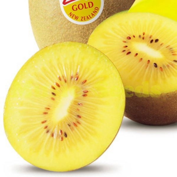 300 Seeds Gold Yellow Kiwi fruit seeds Home and Garden Hot Sale