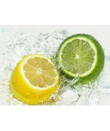 lemon and lime shower gel, health and beauty, bath and body, skin care - $10.00