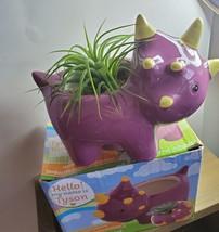 "Live Air Plant in Dinosaur Animal Planter, 5"" purple glazed ceramic pot, Tyson image 7"