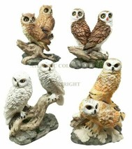 Colorful Barn Great Horned Snowy & Screech Owl Perching On Branch Figuri... - $28.99