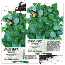 Seed Needs, True Watercress Nasturtium officinale Twin Pack of 500 Seeds... - $11.71