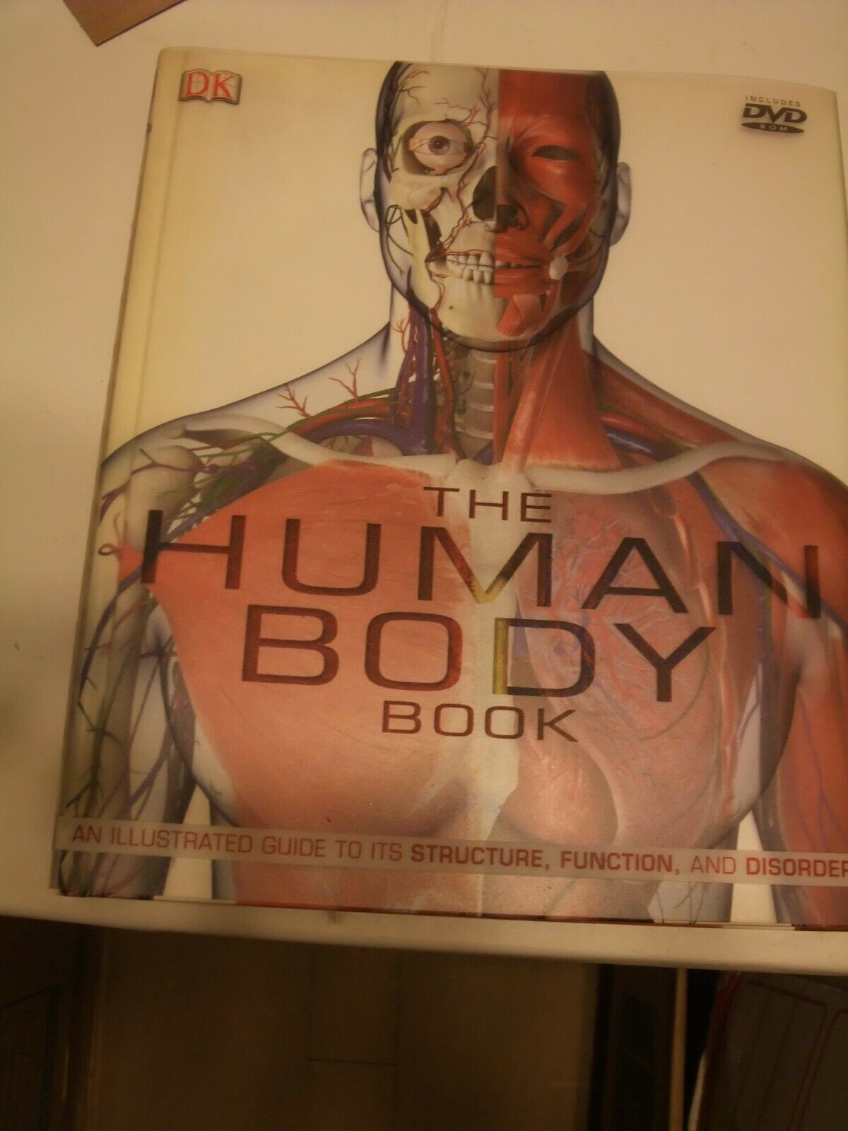 Primary image for The Human Body by Steve Parker, Dorling Kindersley DVD included