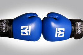 Mooto MMA Sparring Gloves Boxing Taekwondo Karate Martial Arts TKD HKD T... - $68.00