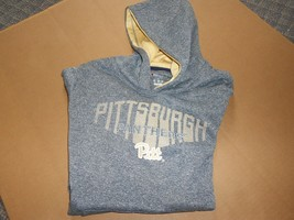 University Of Pittsburgh PITT Panthers Lrg Hoodie  Champion Sweatshirt ... - $14.52
