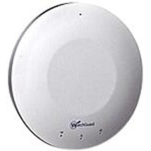 WatchGuard WG001581 AP100 IEEE 802.11a/b/g/n 300 Mbit/s Wireless Access ... - $373.85