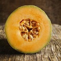Cantaloupe Honey Rock Seeds (Cucumis Melon) 100 Seeds - $6.55