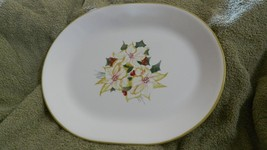 Corelle Winter Harmony 12.25 Inch Oval Serving Platter Used Free Usa Shipping - $37.39