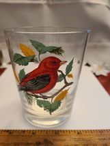 VINTAGE HAND PAINTED SCARLET TANAGER OLD FASHION GLASS West Virginia Glass Spec. image 5