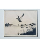 Signed Churchill Ettinger  Mallard Duck Goose Framed Art Etching Maine V... - $280.49