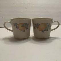 Corning Ware Corelle Abundance Coffee Cups Mugs Set of 2 Fruit Pattern - $5.99