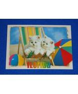 **BRAND NEW** ADORABLE FLORIDA KITTENS ON A BEACH CHAIR POSTCARD BEACHES... - $3.99