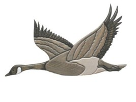 Canada Goose Wings Up - intarsia Wood Carving  - $99.00
