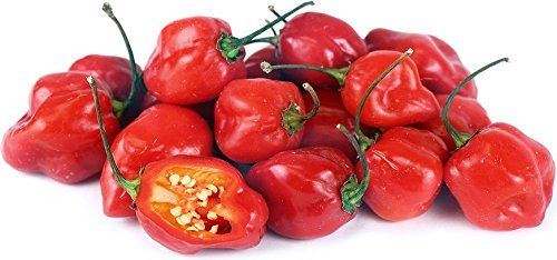 25+ Habanero Pepper Seeds, Heirloom, Non-GMO, Great Fresh and Cooked - $2.99