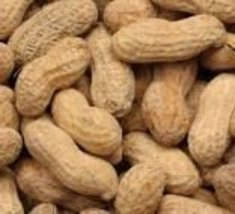 Peanuts Roasted in Shell with Salt -50Lbs - $267.30