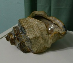 Vintage Faux Conch Sea Shell Glazed Ceramic plant pot Vase - $24.28