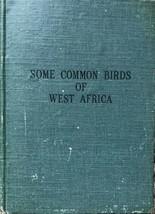 Some common birds of West Africa by William Alexander Fairbairn - $21.73