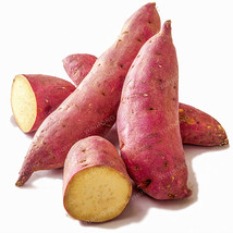 MIx Sweet Potato Seeds Vegetables Seeds Fresh Food Fruit And Vegetable 2... - $4.76