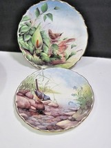 Two Spode British Birds Collector Plates #s 4 6 Wren Grey Wagtail David ... - $37.62
