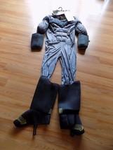 Men's Size Large Batman vs. Superman Muscled Chest Halloween Costume Cape Mask  - $50.00