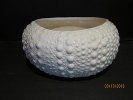 CeramicSea Urchin Shell Planter - $39.98