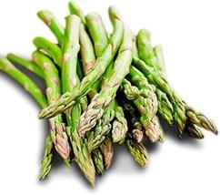 Sow No GMO Asparagus Mary Washington Non GMO Heirloom Perennial Garden Vegetable - $2.64
