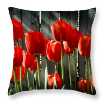 Striking Red Tulips, Throw Pillow, fine art, ho... - $41.99 - $69.99