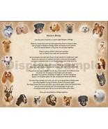 Rainbow Bridge with Dogs  Stationary Sentimental  Print   Perfect For Framing Ne - $11.95