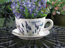 Lavender Fields Teacup Planter - $29.95
