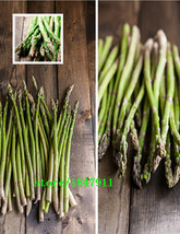 Big sale Dwarf asparagus seeds, leaves and asparagus, perennial evergree... - $8.04