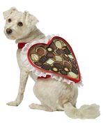 Box Of Chocolates Pet   Dog Costume , X-LARGE - Free Shipping - $32.00