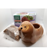 Walrus Animal Planter Grow Kit, ceramic pot with soil and mint herb seeds - $12.99