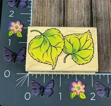 Hero Arts Aspen Leaves Rubber Stamp 1996 C1135 Plant Wood #J128 - $3.22
