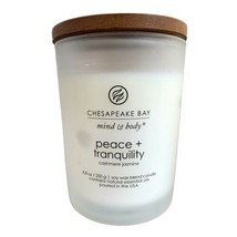 Chesapeake Bay Candle Scented Candle, Peace + Tranquility Cashmere Jasmi... - $18.80